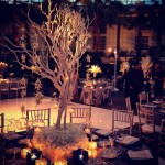 Crystal Gardens Wedding Liven It Up Events 4